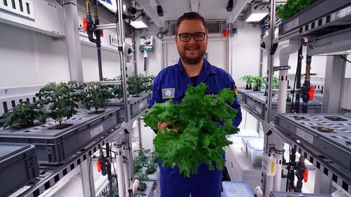 DLR-Forscher Paul Zabel hält den ersten geernteten Antarktis-Salat in den Händen