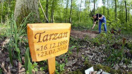 Auf einem Hundegrab stehen auf dem Waldtierfriedhof