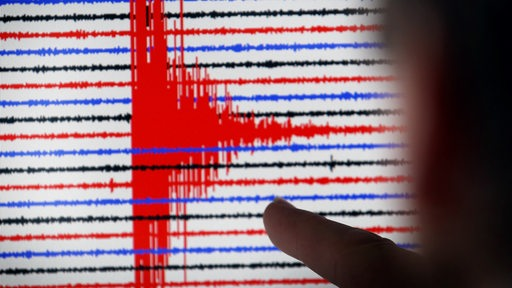 Eine Person schaut sich auf einem Bildschirm das Diagramm eines Seismographen an.
