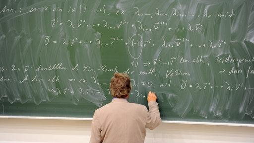 Ein Professor schreibt an eine Tafel (Symbolbild)