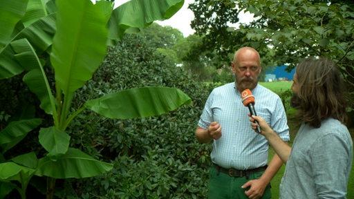 Reporter Freddy Radeke, der Matthias Rieger interviewt. Dieser ist Leiter eines Aboretums. Sie stehen neben einer Bananenstaude