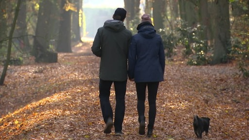 Ein Mann, eine Frau und ein Hund während eines Spaziergangs in einem Wald.