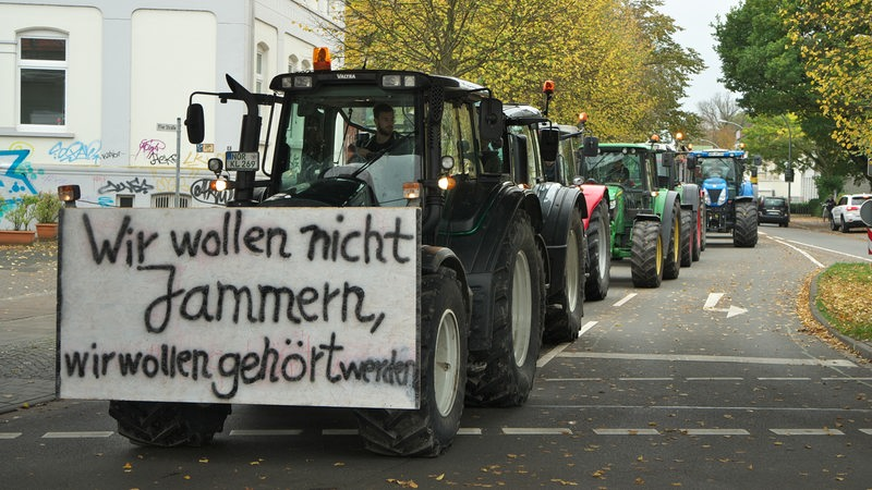 Landwirte protestieren mit Traktoren in Oldenburg. (Archivbild)