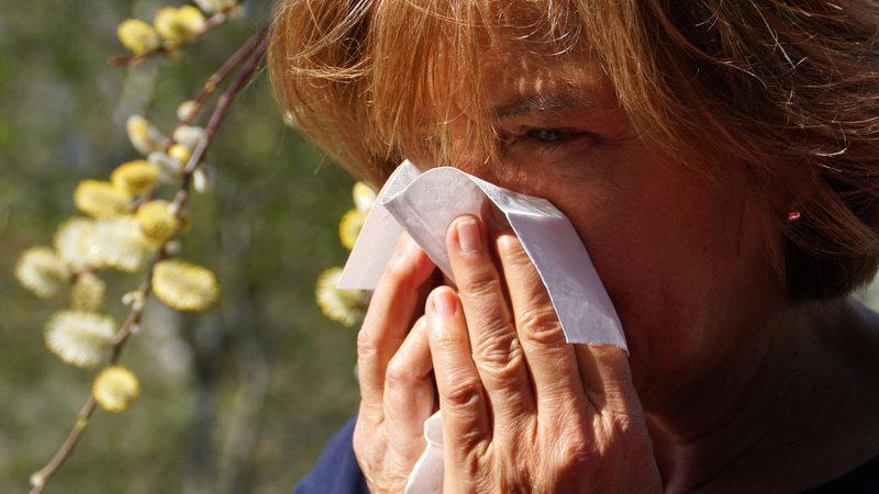 Was Hilft Gegen Pollen