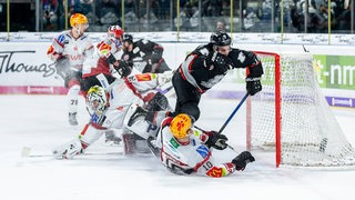 Fischtown Pinguins Nürnberg Ice Tigers