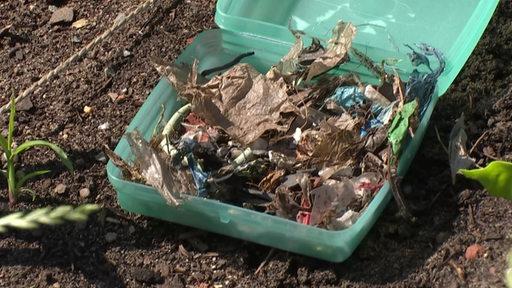 Plastikstücke im Kompost