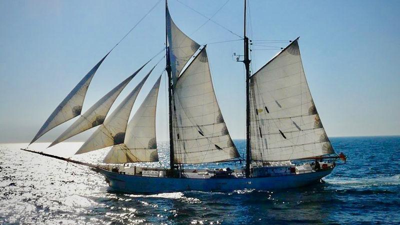 Segelschiffe auf dem meer  Segelschiffe in der Logistik – hat das Zukunft? - buten un binnen