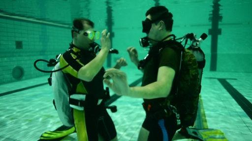 Zwei Taucher beim Training in einem Hallenbad