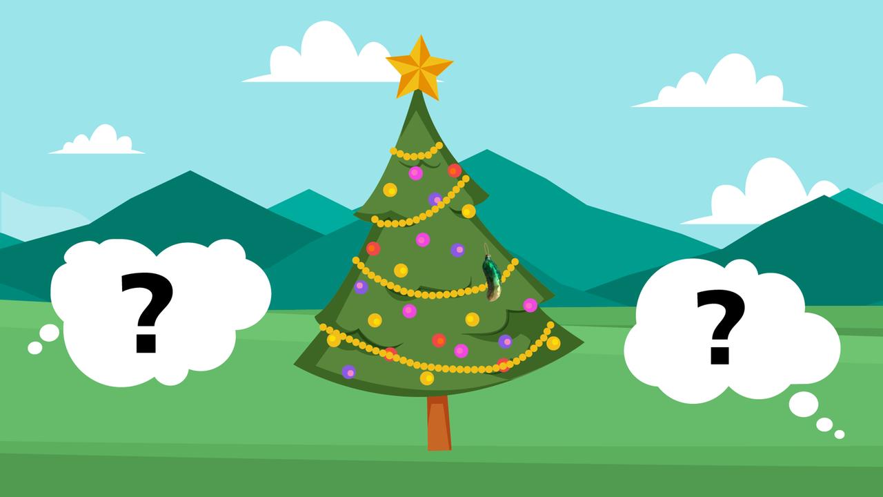 Wie eine Gurke zum Weihnachts-Bestseller im Schnoor wurde - buten un ...