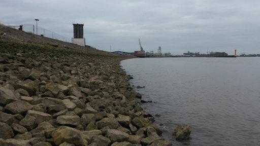 Ein Bild des Weserufers.