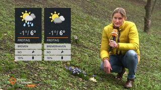 Wetter Diepenau
